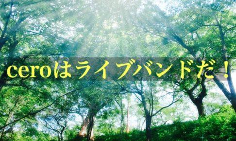 陽の光が差し込む森