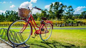芝生の上のピンクの自転車