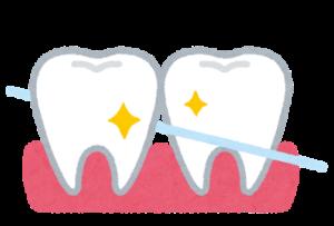 デンタルフロスで綺麗になった歯